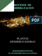 2 Procesos de Deshidratación 2014