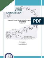 Metabolisme Karbohidrat (Bio Chem) - Ogi NH.