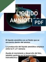 liquidoamnioticomemb-140420203211-phpapp01
