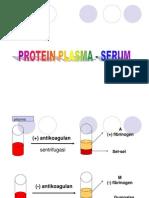 Protein Serum S1