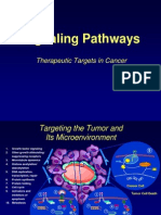 Signaling Pathways.pptx