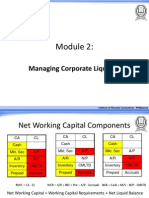 Cash Flow and Working Capital Management - Module 2 - Comprehensive Liquidity Index, Cash Conversion Cycle