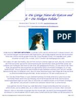 Tierbewusstsein- Katzen und Hunde