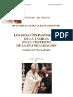 Desafios Pastorales de La Familia en El Nuevo Contexto de Evangelización