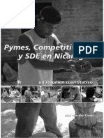 1.2 PyMEs Competitividad y SDE en Nic