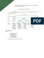 Filum Protozoa Dibagi Ke Dalam 4 Kelas Berdasarkan Alat Geraknya