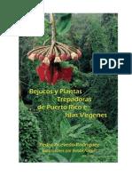 Acevedo-Rodriguez P.A. 2003. Bejucos y Plantas trepadoras de Puerto Rico e Islas Virgenes.pdf