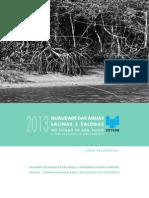 Relatorio Aguas Superficiais 2013 Parte2