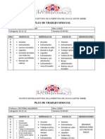 PLAN SEMANAL.docx