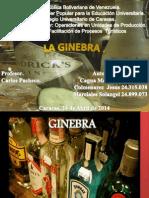Gin Tonic Ginebra