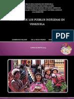 Expo Indigenas 2014