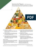 Piramide Nutricion Vegana (1)