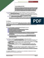 AGLOMERANTES_13.pdf