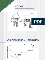 3-hominidos