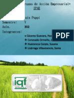 Planes de Mejora - Iqf Del Peru Sa