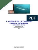 Pesca Corvina