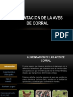 ALIMENTACIÓN DE AVES DE CORRAL