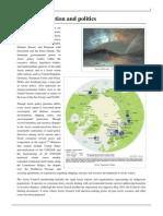 Arctic Cooperation and Politics