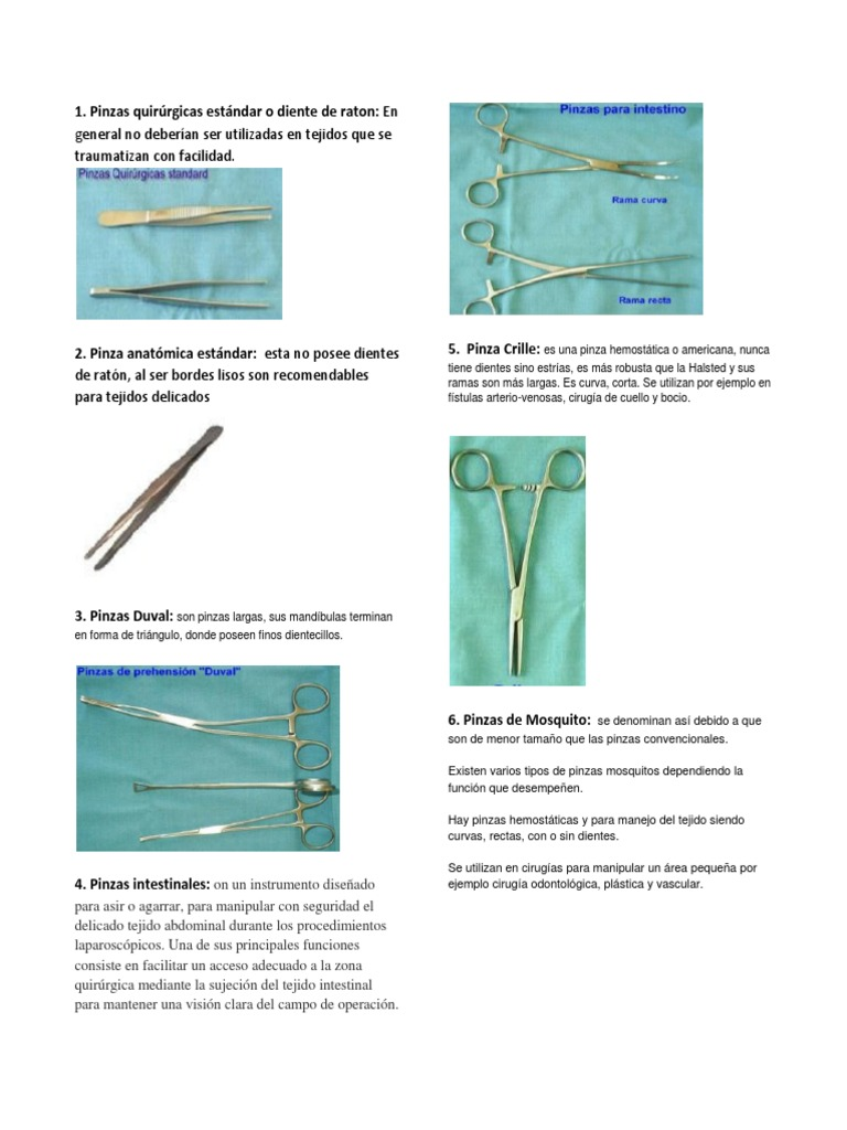 Vistoso Anatomía Estrías Definición Molde - Imágenes de Anatomía ...