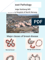 1.3-Breast Pathology (Stalsberg)