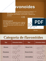 Flavonoides Final