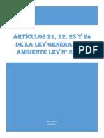 TRABAJO Monografico Ley 21 22 23 y 24