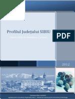 Lnr8o_Profil Judetul Sibiu_actualizat 10.09.2012