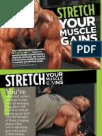 Stretch Muscle Gains -  Stevenson