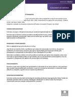 Modelo de Planejamento de Campanha_2012.pdf