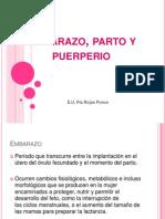 Embarazo, Parto y Puerperio