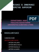 Vaskularisasi Ekstremitas Superior 1