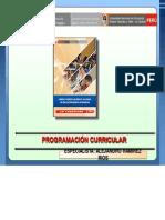 Programacion Curricular en Eba