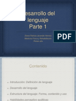 Desarrolo lenguaje 1