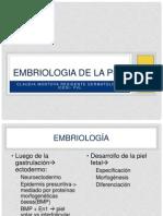 embriologia de la piel.pptx