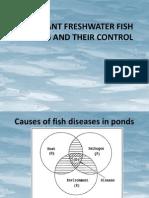 Fish Diseases in Freshwater