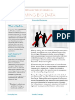 Taming Big Data - Addressing the CEO's Dilemma