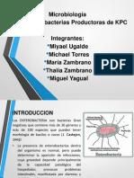 Bacteria Kpc