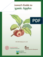 A Grower's Guide to Organic Apples
