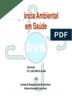 3 - Vigilancia Ambiental- Carlos Flvio