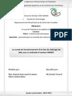 Mémore de Licence.doc