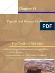 Chapter19 Primate and Human Evolution