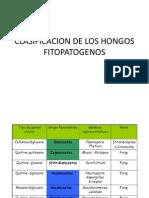 CLASIFICACION DE LOS HONGOS FITOPATOGENOS.pptx