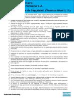 Recomendaciones de Seguridad - Tecnicos ( Nivel 1. 2 y 3 - Contratos ).doc