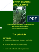 13 - Vetiver System for Agriculture