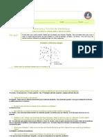 ABP 4-Transporte de Membranas Resuelta