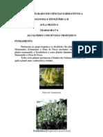 5ªA-Alcalóides tropânicos