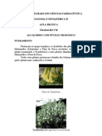 5ªB-Alcalóides tropânicos