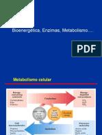 PRIMERA CLASE Bioenergetica Enzimas Metab LC