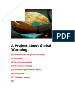 A Project About Global Warming