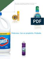 Clorox 2013 Executive Summary Spanish